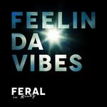 Feelin Da Vibes