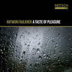 A Taste Of Pleasure EP
