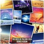 The Best Of Pulsar 2014 (Bonus Album)