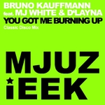You Got Me Burning Up (Classic Disco mix)