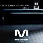Little Big Sampler Vol  9