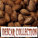 Descar Collection