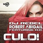 Culo (remixes)