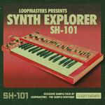 Synth Explorer - SH101 (Sample Pack WAV/APPLE/LIVE/REASON)