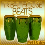 Tribal House Beats Vol 07