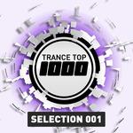 Trance Top 1000 Selection Vol 1
