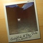 Polaroid - EP