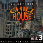 25 Detroit Chillhouse Vol 3