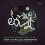 Better Than This (Larry Heard Remixes)