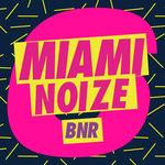 Miami Noize 6 (Explicit)