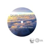 Flying In An Eternal Dream