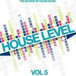 House Level Vol 5