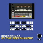 Reworkings By The Deepshakerz