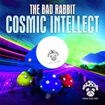 Cosmic Intellect