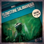 Flowstone Salamander