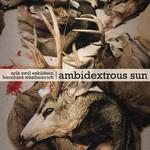 Ambidextrous Sun