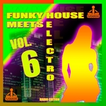 Funky House Meets Electro Vol 6 (Radio Edition)