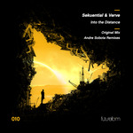Into The Distance (remixes)