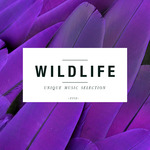 Wildlife Volume 5