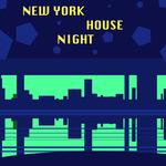 New York House Night
