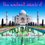The Ambient Sounds Of Taj Mahal Vol 1: Buddha Chill Out Lounge