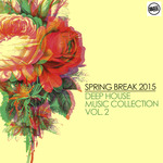 Spring Break 2015 Deep House Music Collection Volume 2