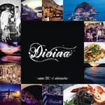Divina Lounge S Angelo Ischia 2015
