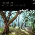 Adventures In Lofi