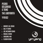 The Labyrinth (remixes)