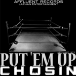 Put 'Em Up (Affluent mix)