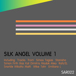 VARIOUS - Silk Angel Vol 1 (Front Cover)