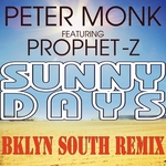 Sunny Days (Bklyn South remix)