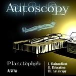 Autoscopy