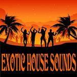 VARIOUS - Exotic House Sounds (Front Cover)