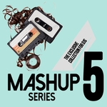 Mashup Series Vol 5 - The Exclusive Collection For DJs