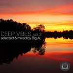 Deep Vibes Vol 2