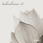VARIOUS - Technolicious #5 (Front Cover)