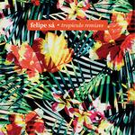 Tropiculo (remixes)