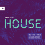 VARIOUS - SubSoul Presents House (Front Cover)