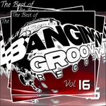DJ FUNSKO/VARIOUS - The Best Of Banging Grooves Records Vol 16 (unmixed tracks) (Front Cover)