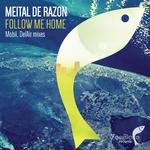 Follow Me Home (remixes)