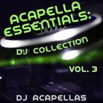 Acapella Essentials (DJ Collection Vol 3)