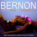Flower From The Underground (Deep House Meets Lounge & Chill Out Sounds)