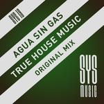 True House Music