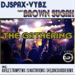DJ SPAX VYBZ feat BROWN SUGAH - The Gathering (Front Cover)