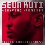 Higher Consciousness Remix EP
