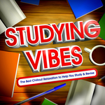Studying Vibes (The Best Chillout Relaxtion To Help You Study & Revise)