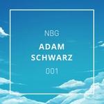 NBG001