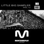Little Big Sampler Vol  12