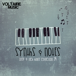 Synths & Notes 24